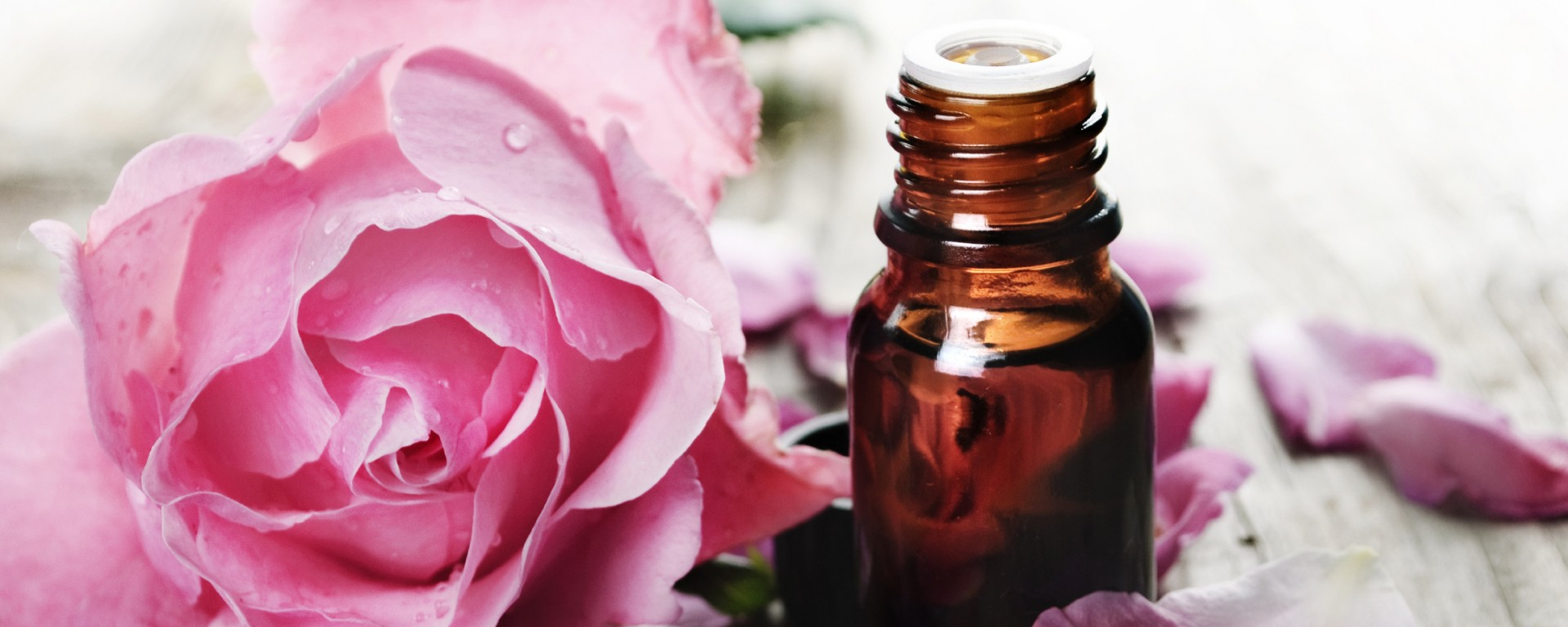 "Bulgarian rose oil – why it's called ""liquid gold"""